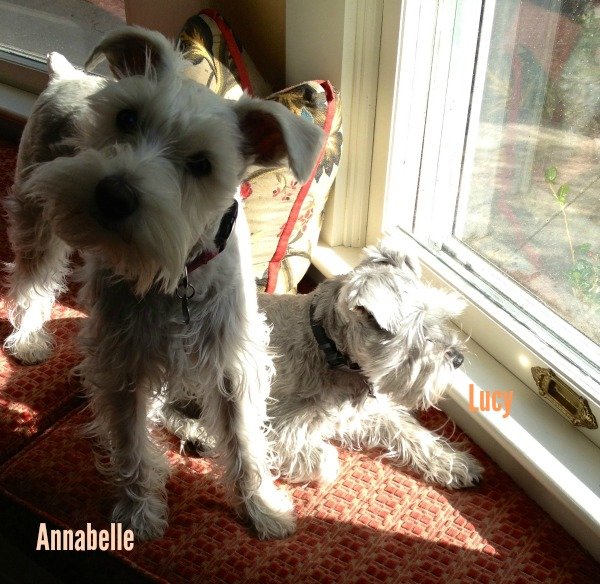 Lucy and Annabelle