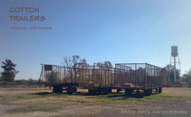 Farm Art Friday: Old Cotton Trailers