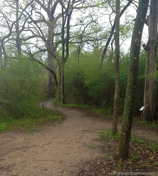 Campion Trail, Las Colinas