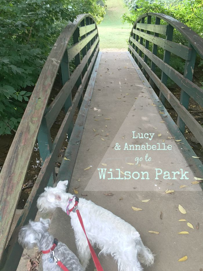 Lucy and Annabelle go to Wilson Park