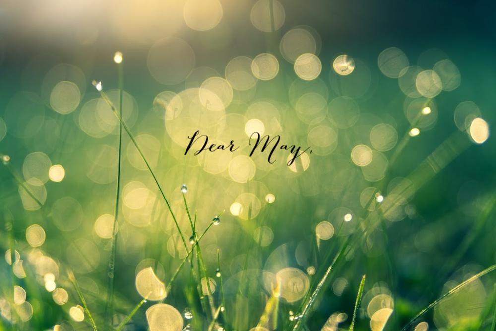 Dear May