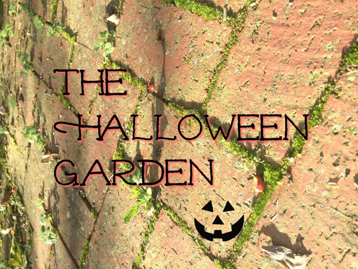 The Halloween Garden
