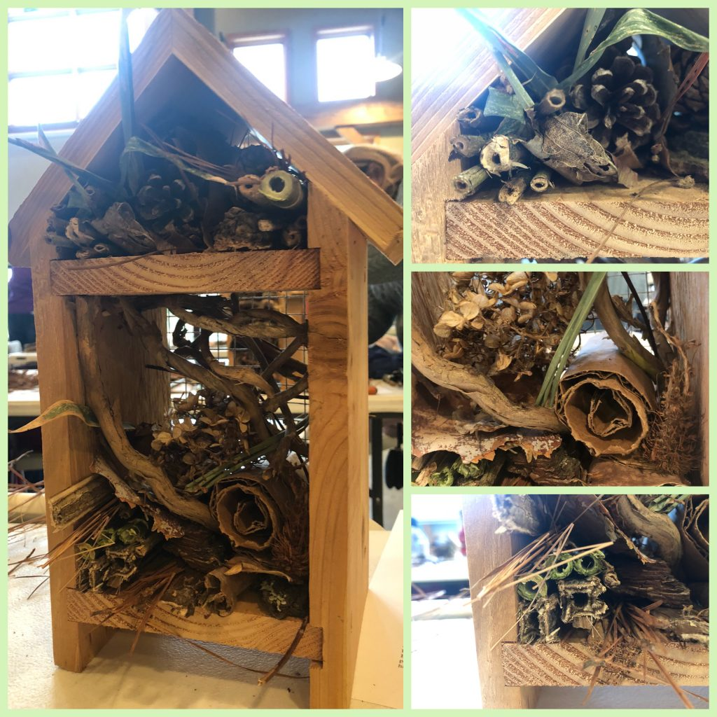 my insect hotel