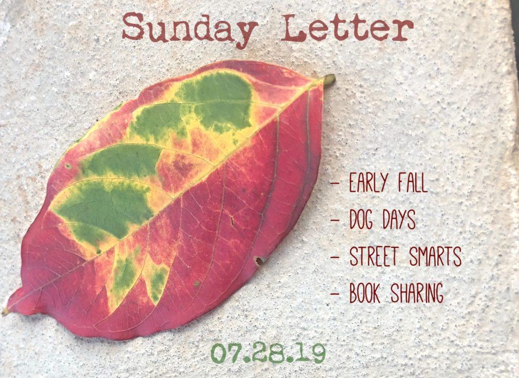 Sunday Letter