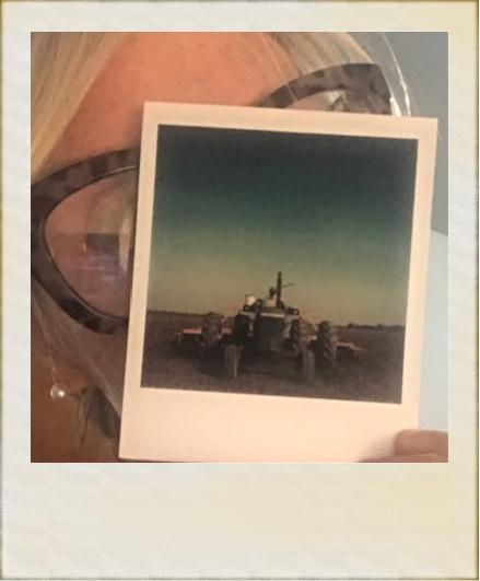 Vintage Harvest: Polaroid